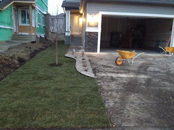 Final grade front yard